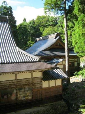 Japan_Month_1_570.jpg