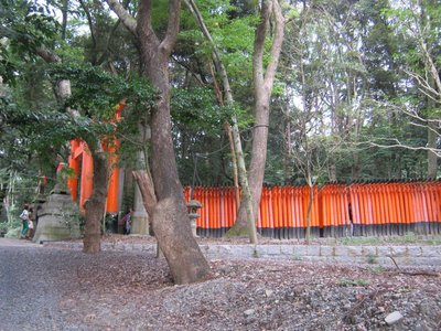 torii tunnel from side