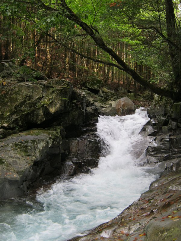 Mount Omine Waterfall
