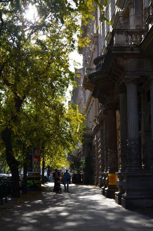 large_Tree_lines_streets.jpg