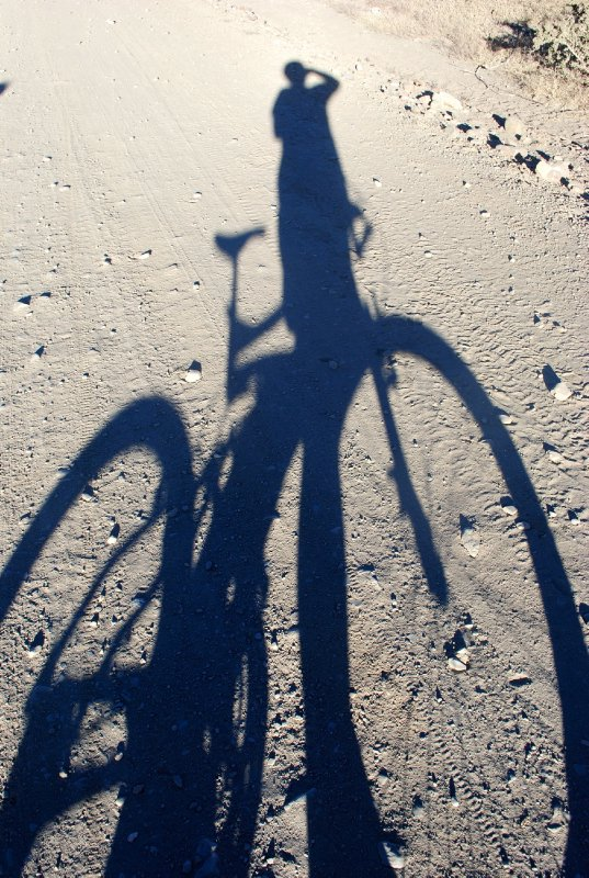 large_bike_shadow.jpg