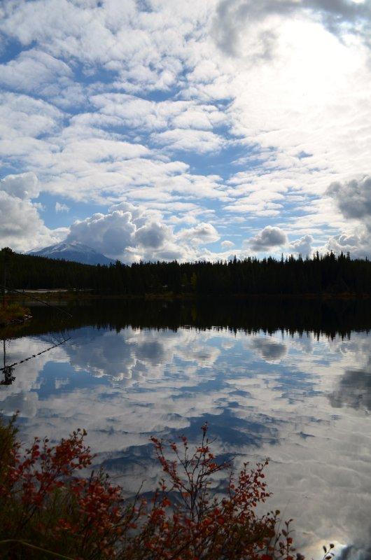 large_reflections.jpg