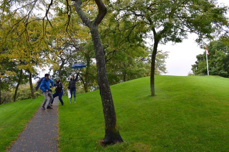 large_walk_through_park.jpg