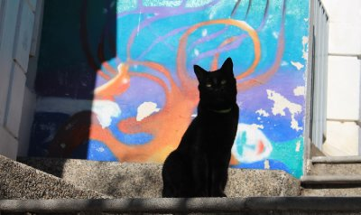 2-Valparaiso__3_.jpg