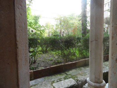 Garden in the convent