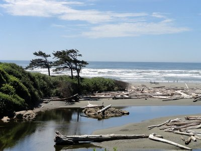 The Pacific at Kalaloch
