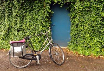 A Bike to Call My Own