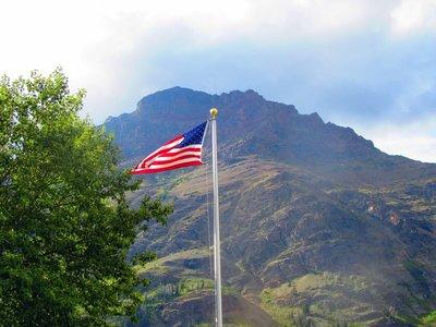 Americans Love Their Flag