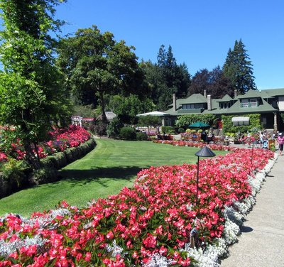 Arriving at Buchtart Gardens