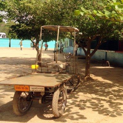 Transport Bike at the Market