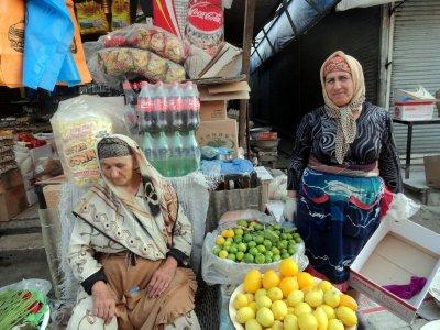 Citrus Sellers