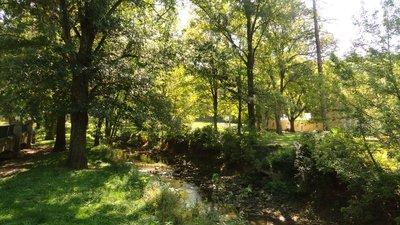 Creek with Healing Waters