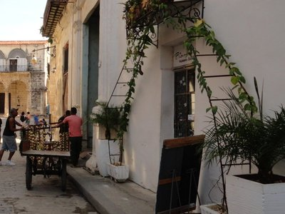 Delivering Produce to a Paladar