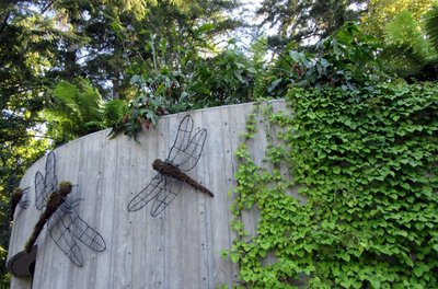Dragonflies on the Wall