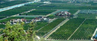 Farmland Delta