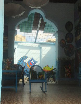 Gato Azul Gallery