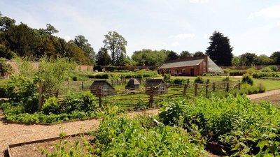 Kitchen Garden and Greenhouse