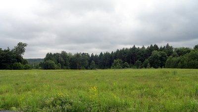 Land Ravaged Twice