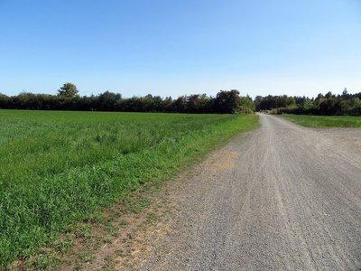 Lochside Bike Path through the Sunny Fields