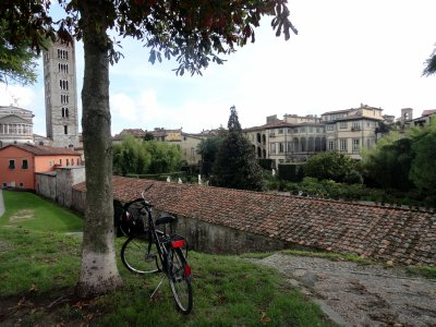 Bike ride on the top of the wall in Lucca