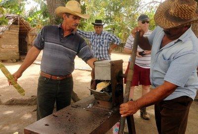 Making Sugar Cane Drink