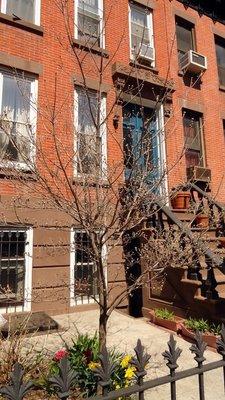 My Brooklyn Brownstone