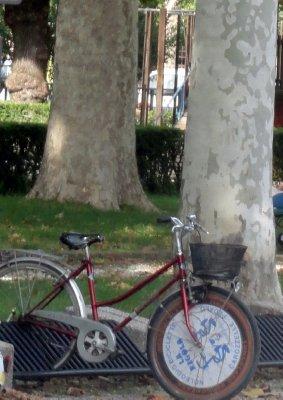 Park at Palazzo Te
