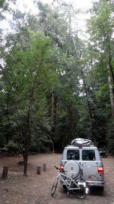 Pfeiffer State Park campsite