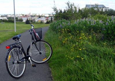 Riding into Reyjkavik