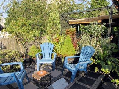 Rooftop Garden I