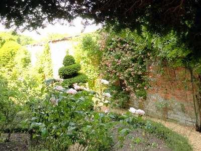 Roses and Topiary