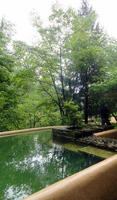 Springfed Plunge Pool