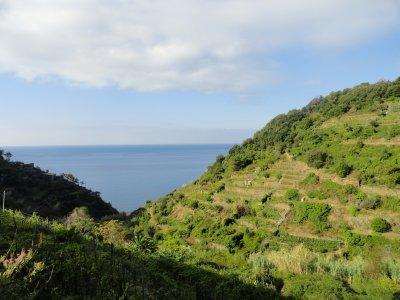 Terraced_mountainside.jpg
