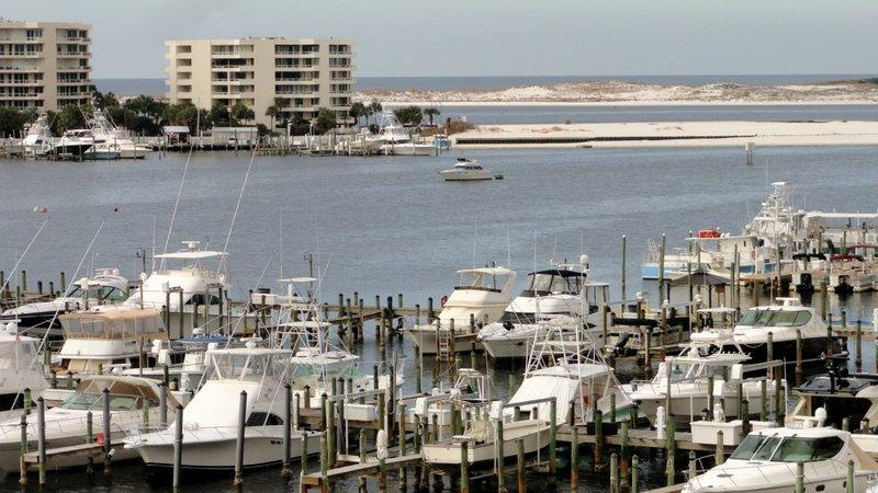 Anywhere, NW Florida Gulf