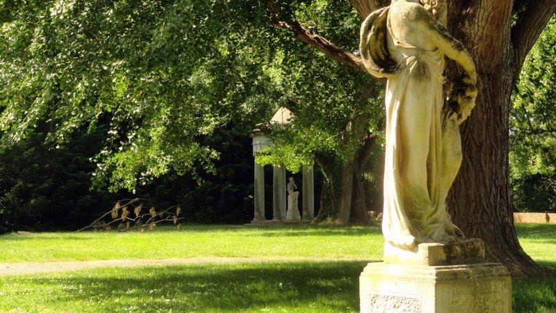Chatham's Garden