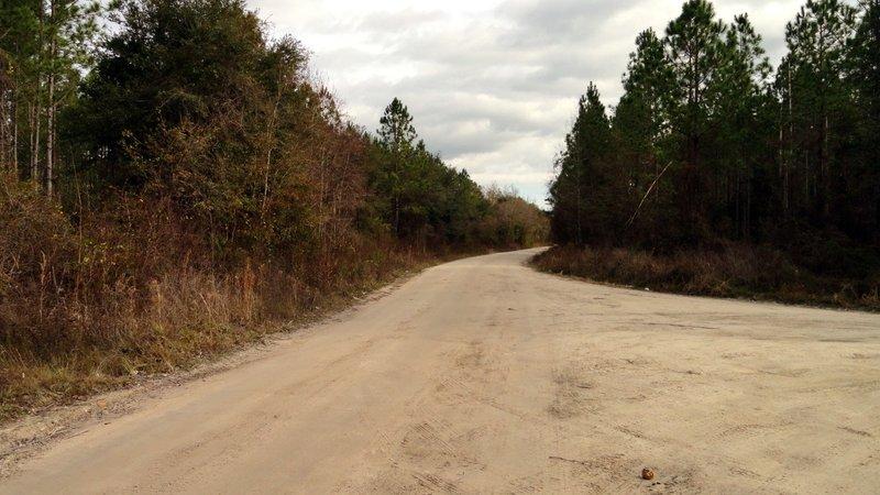 Florida Beaten Path