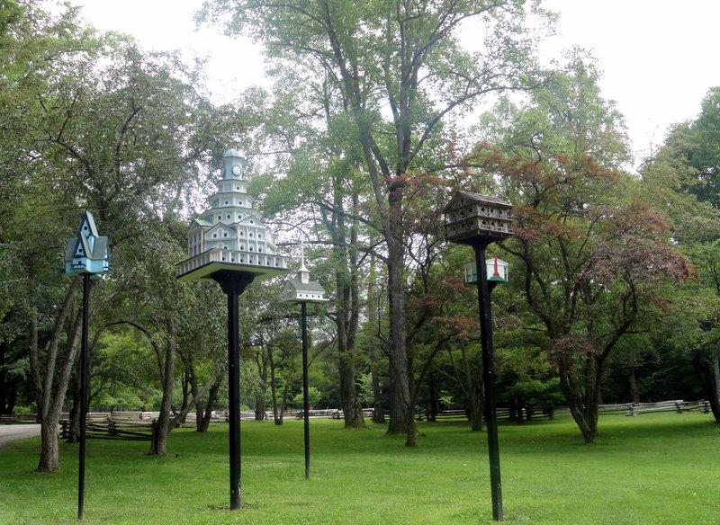 The Birdhouses