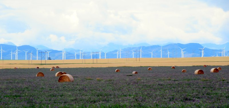 Wind Farm and Hayfield