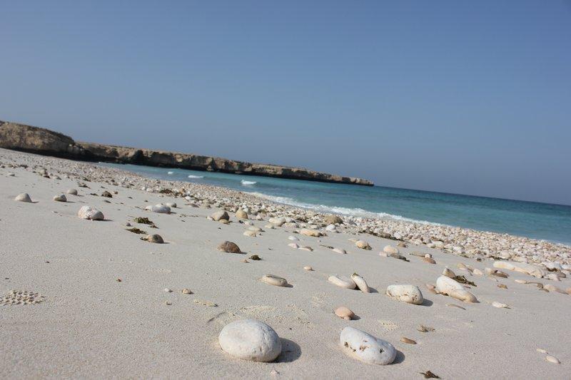 Fins Beach