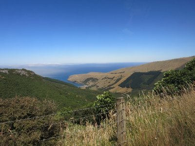 Long_Bay_above_Akaroa.jpg