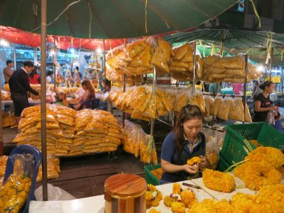 Marigolds for temple garlands