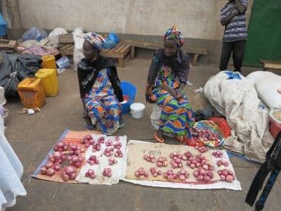 Onion sellers