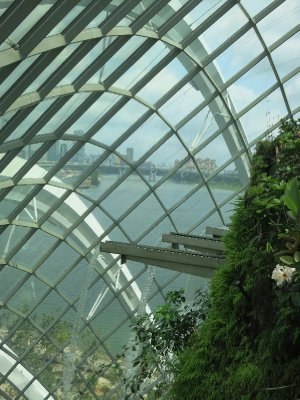Singapore behind cloud forest (1)