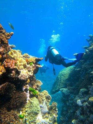 KT_between..r_Reef_2012.jpg
