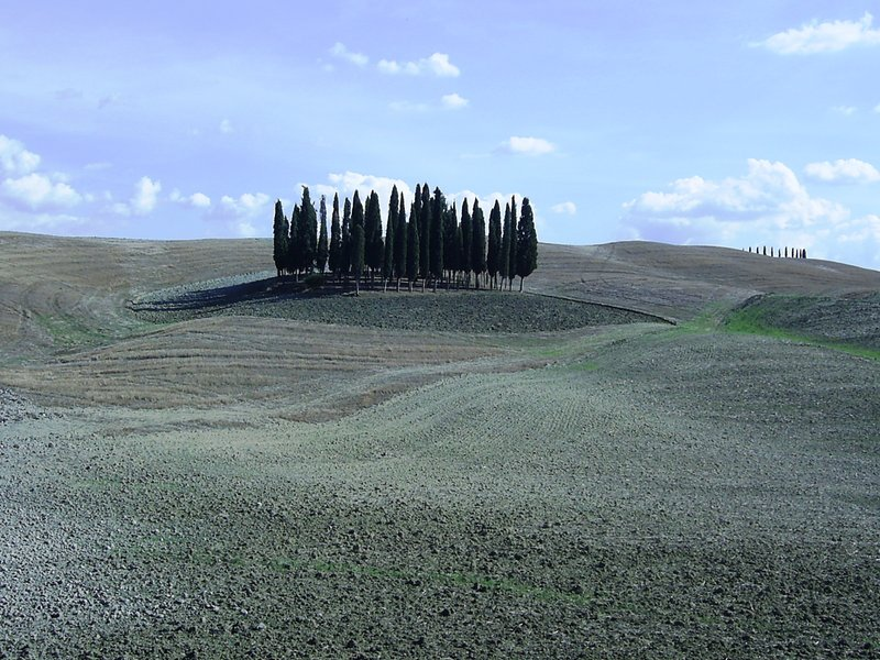 Valdorcia, Siena, Tuscany
