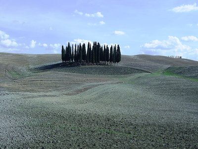 Valdorcia, Siena, Tuscany