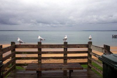 Cowes, Phillip Island