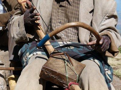 Masenko traditional fiddle
