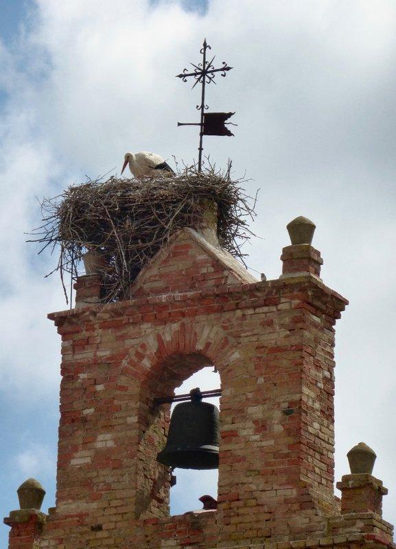 Stork House Rules