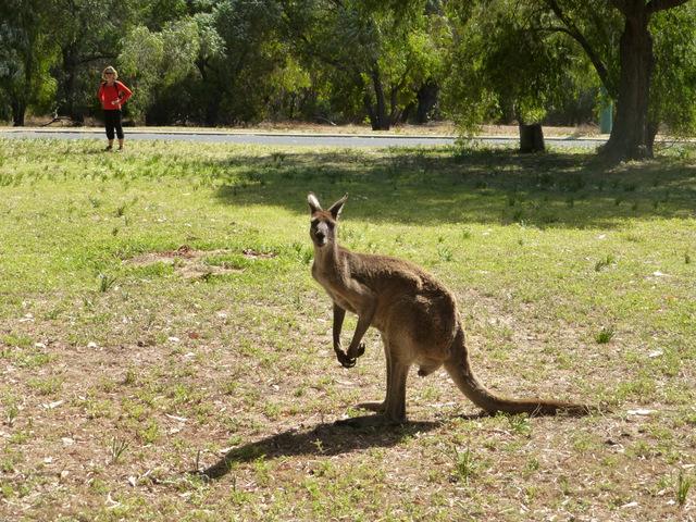 large_Bloc_Australia-032.jpg